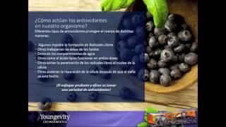 Super Antioxidante Saxi