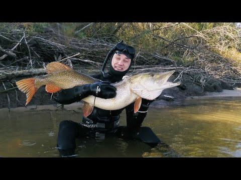 рыбалка в жерелево 2015