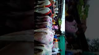 POLA FESTIVAL IN JOGA ( KAJALI) TAH- KARANJA GHADAGE DIST -WARDHA MAHARASHTRA INDIA,