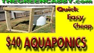 Cheap & Easy $40 AQUAPONICS / LARGE SCALE DIY How-To Barrelponics Aquaponic Set Up