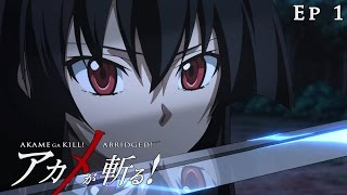 Akame ga Kill! Abridged! - Episode 1