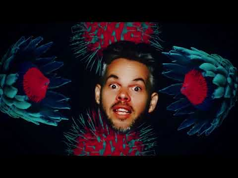 Download Pnau - Into The Sky (Official Music Video)