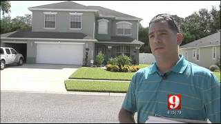 Fight the HOA or risk damaging your home... One man's fight over tree in Oviedo