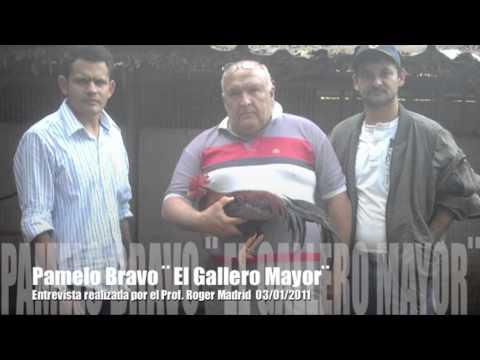 Entrevista Pamelo Galleros de Venezuela