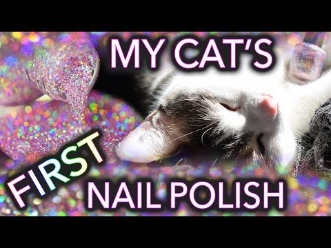 My Cat Menchie's first nail polish porn!