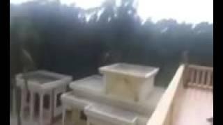 অনন্ত জলিল আর রজনীকান্ত যখন ক্রিকেট খেলে