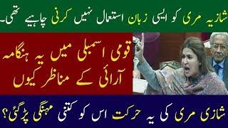 Shazia Muree Vulgar Language In National Assembly   Neo News