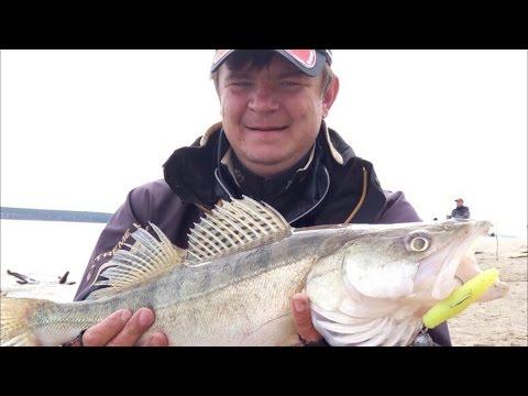 видео о рыбалке с гриней