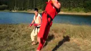 Street Fighter - Learn the style of Shotokan-style Karate (Ansatsuken).