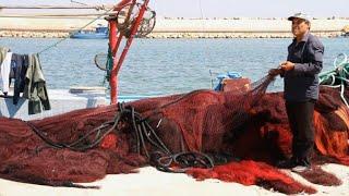 Dynamite fishing thrives in Libya