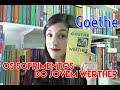 Os sofrimentos do jovem Werther, Goethe