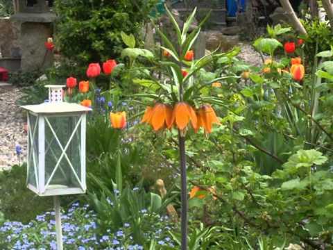 Ogród Ewy metamorfozy. Wiosna