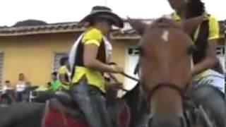 جفت گیری  خنده دار دو راس اسب هنگام سوار کاری دو تا دختر شیک پوش