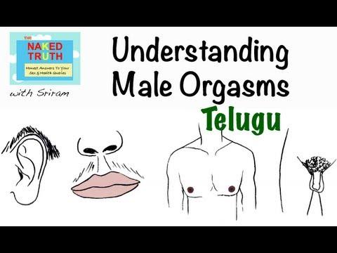 Xxx Mp4 What Is An Orgasm Telugu 3gp Sex