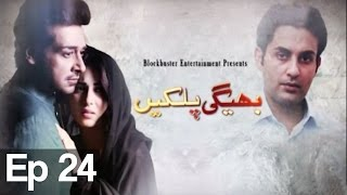 Bhegi Palkain - Episode 24 | ATV