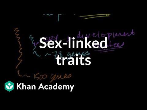Sex-linked traits | Biomolecules | MCAT | Khan Academy