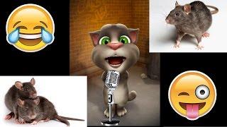 चूहे का शेहरा सुहाना लगता है    Dhadkan   Most Funny Song By Talking Tom   Latest Funny Song