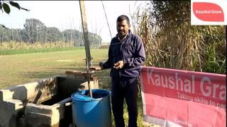 Jeevamrit Application with Water: जैविक कृषि में जीवामृत का जल के साथ उपयोग