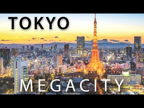 TOKYO Earth s Model MEGACITY