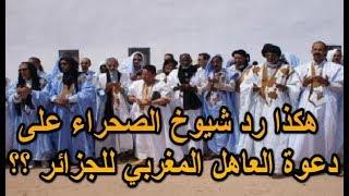 هكذا رد شيوخ الصحراء على دعوة العاهل المغربي للجزائر؟؟
