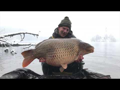 Carp fishing at Lake Bled December 2019