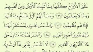أجمل تلاوة سورة يس ماهر المعيقلي Maher Almuaiqly