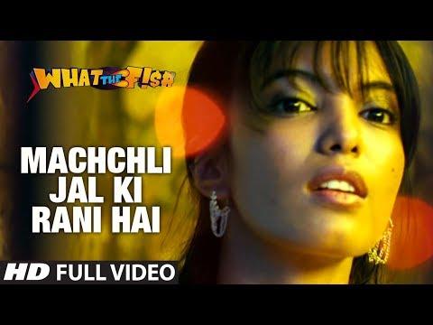 Xxx Mp4 Machchli Jal Ki Rani Hai Full Video Song What The Fish Dimple Kapadia Manjot Singh 3gp Sex