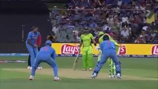 Amazing cricket seen in Videos |2016| HD Full