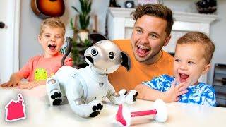 Meet Our New Robot Dog! 🤖