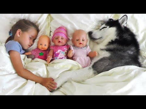 Xxx Mp4 My Super Fun Day With Baby Dolls And Dog Sofia Pretend Play With Toys For Girls 3gp Sex
