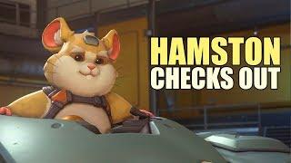 Hamston Checks Out