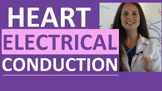Electrical Conduction System of the Heart Cardiac | SA Node, AV Node, Bundle of His