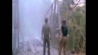 tuxtepec 1977 (El Hechicero )