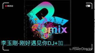 李玉刚-刚好遇见你DJ+加快版remix