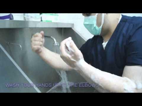 Xxx Mp4 Surgical Hand Scrubbing 3gp Sex