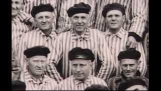 СВИДЕТЕЛИ ИЕГОВЫ проводимая нацистской Германии?