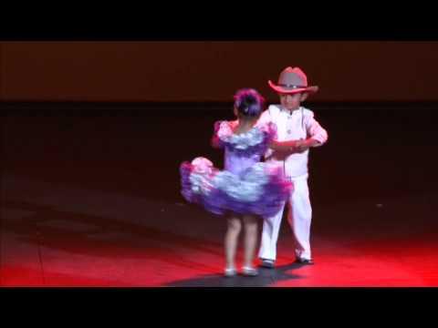 Baile Joropo