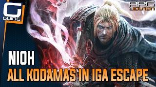Nioh Guide - All Kodamas in The Iga Escape Mission
