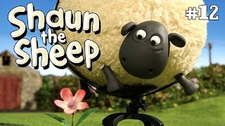 Shaun the Sheep - Shirley Whirley S2E12 (DVDRip XvID) HD