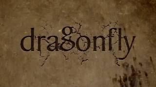 Dragonfly Education Showreel