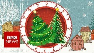 Fake or fir? Your Christmas tree