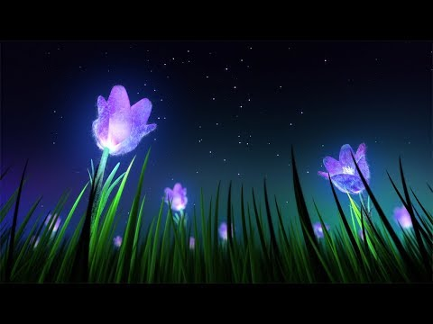 Relaxing Sleep Music and Night Nature Sounds Soft Crickets Beautiful Piano Fall Asleep Fast