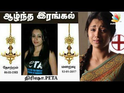Jallikattu supporters target actress Trisha for endorsing PETA | Hot Tamil Cinema News