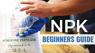 A Beginners Guide: NPK in Hydroponics