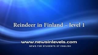 Reindeer in Finland – level 1