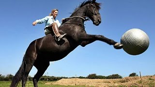 IF YOU DON'T LAUGH, YOU LOSE  - Hilarious ultimate HORSE compilation - Watch and enjoy!