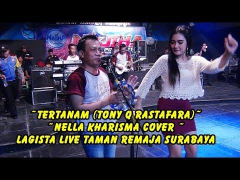 Download Lagu #Tertanam (Tony Q Rastafara)  - Nella Kharisma cover -  Lagista Live Taman Remaja Surabaya MP3