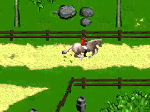 FUCK HORSES