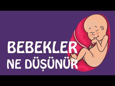 Bebekler | Bir bebek anne karnındayken ne hisseder | laforizma