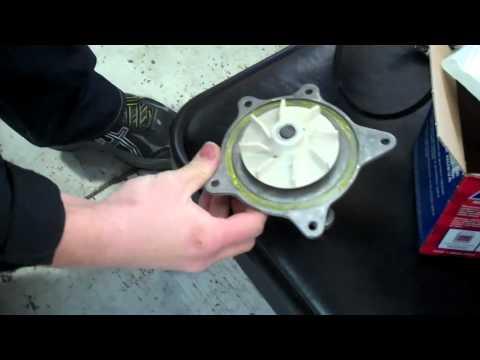 Dodge or Chrysler minivan 3.3 or 3.8 v6 water pump Tutorial